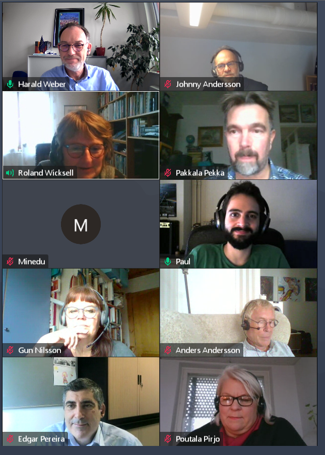 Video conference screenshot
